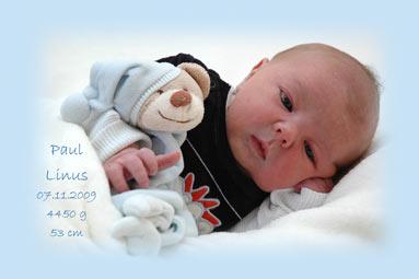 Paul Linus - First Moment -Bild